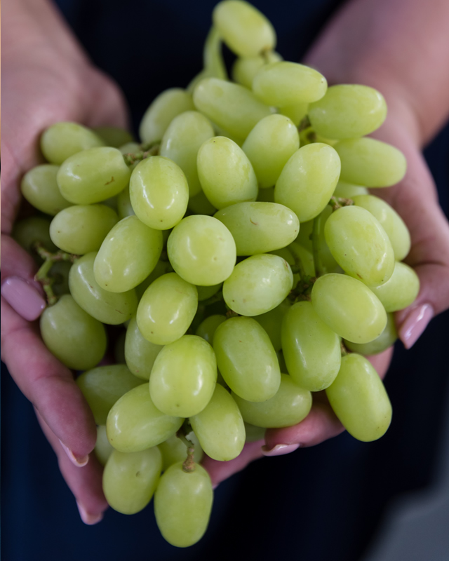 Nel Brothers Grapes